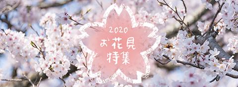 お花見特集2020